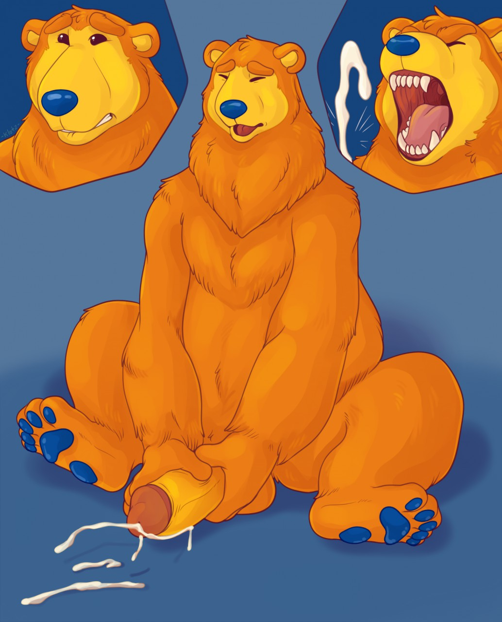 bear in big brown house the the blue Female muscle growth e hentai